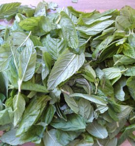 1. separate the mint leaves from stems.wash them.