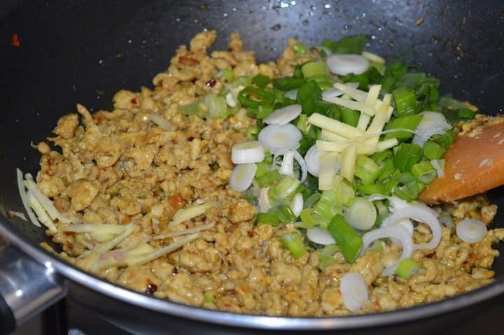 Stir Fry Chicken Mince with Green Onion (ready in less than 20 minutes ...