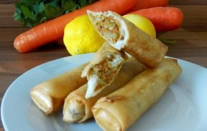 Spring rolls(chicken and vegetable)