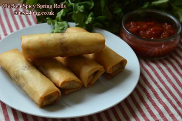 Chicken spicy spring rolls
