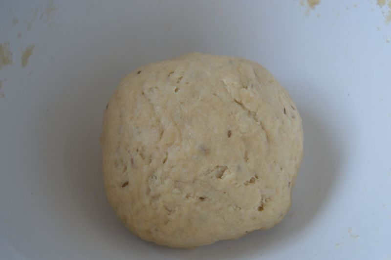 chicken onion samosa